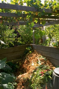 Compost heap piled up in the corner of a wooden bin