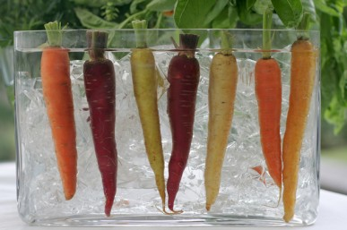 Cruncy, multi-coloured heirloom carrots