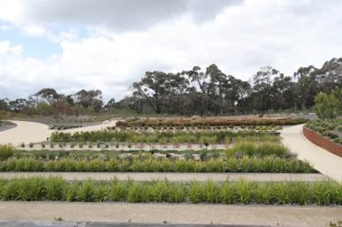 Cultivar garden