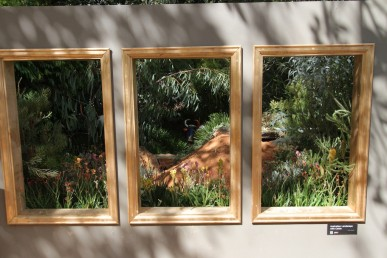 A triptych in the Tree and Shrub Growers and Yates display garden