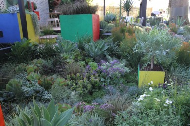 Cubeism by Phillip Withers, Semken Landscaping and Gardenworld