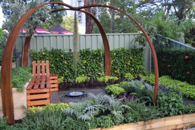 Student garden with a lovely combination of edible and ornamental plants