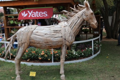 Teak wood horse from recycled teak wood pieces