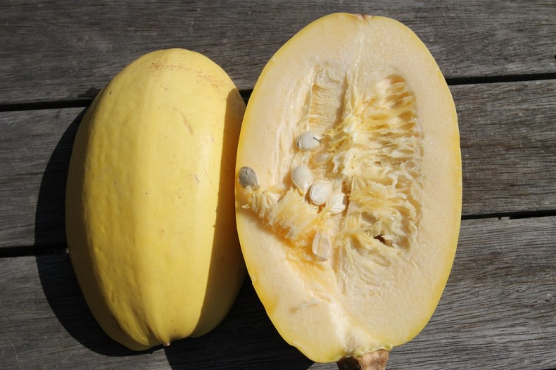 Spaghetti and gem squash are easy to grow and have a delicate flavour