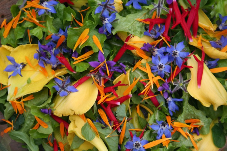 Delicious edible flowers