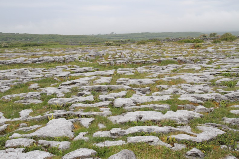 The Burren, showing clints and grikes