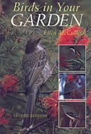 Birds in Your Garden