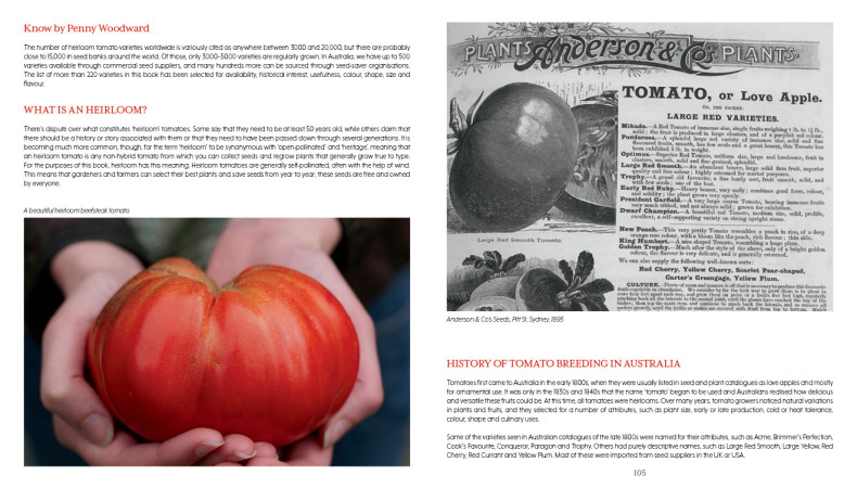Extract from Tomato
